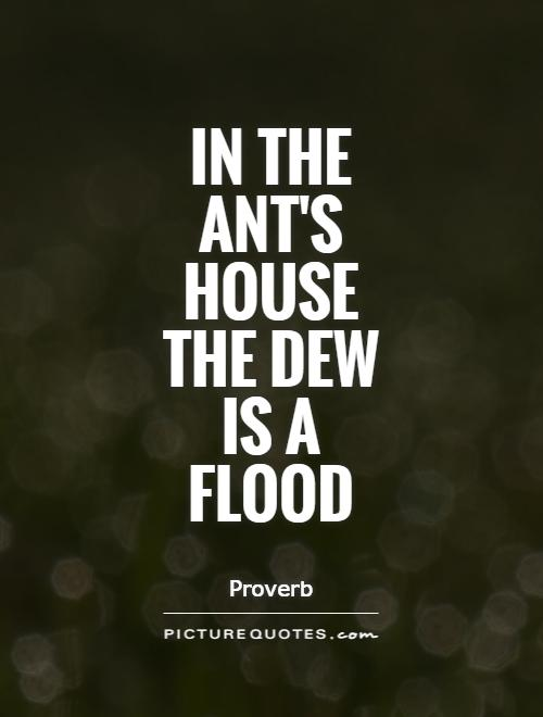In the ant's house the dew is a flood Picture Quote #1