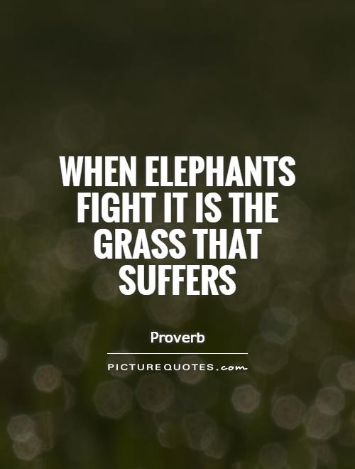 When elephants fight it is the grass that suffers Picture Quote #1