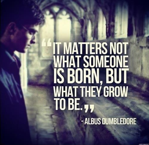 It matters not what someone is born, but what they grow to be Picture Quote #1