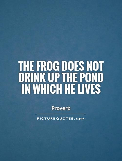 The frog does not drink up the pond in which he lives Picture Quote #1