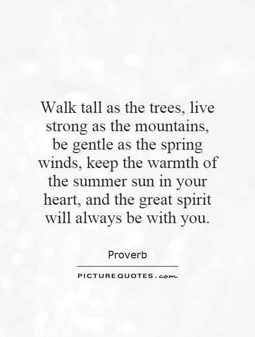 Walk tall as the trees, live strong as the mountains, be gentle as the spring winds, keep the warmth of the summer sun in your heart, and the great spirit will always be with you Picture Quote #1