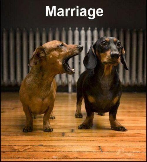 Marriage Picture Quote #1
