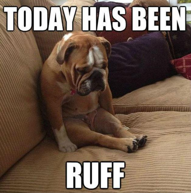 Today has been | Picture Quotes