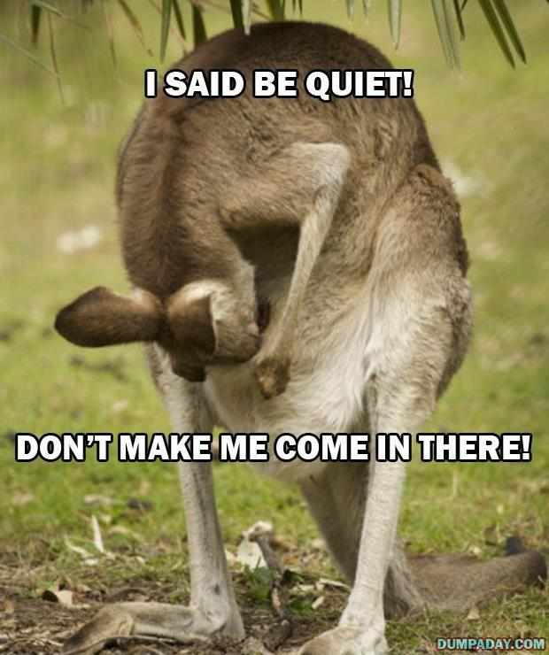 I said be quiet! Don't make me come in there Picture Quote #1