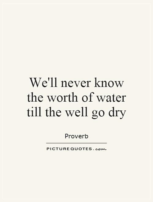 We'll never know the worth of water till the well go dry Picture Quote #1