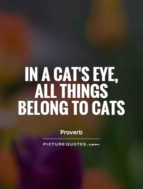 In a cat's eye, all things belong to cats Picture Quote #1