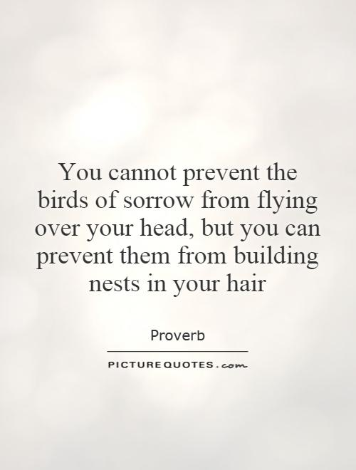 You cannot prevent the birds of sorrow from flying over your head, but you can prevent them from building nests in your hair Picture Quote #1