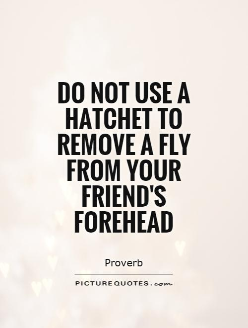 Do not use a hatchet to remove a fly from your friend's forehead Picture Quote #1