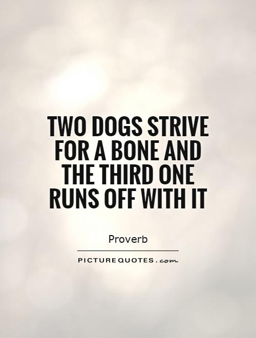 Two dogs strive for a bone and the third one runs off with it Picture Quote #1