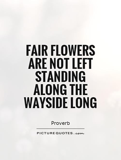 Fair flowers are not left standing along the wayside long Picture Quote #1