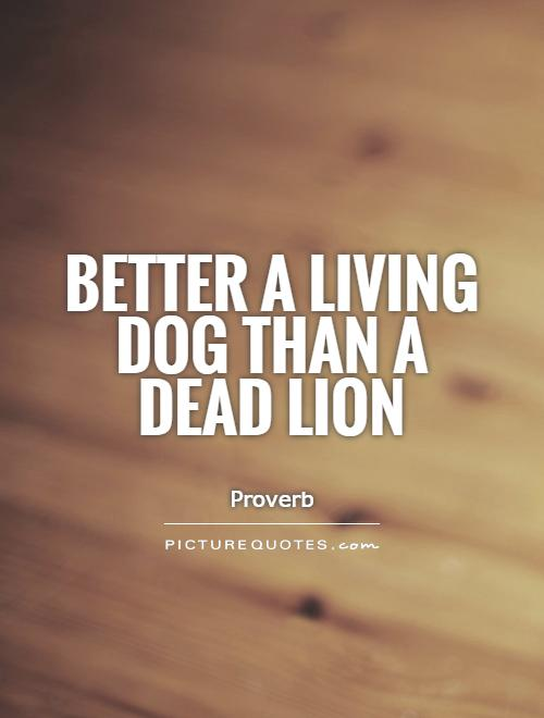 Better a living dog than a dead lion Picture Quote #1