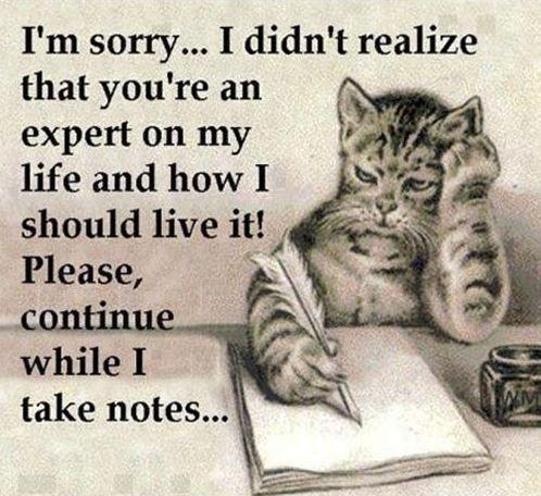 I'm sorry, I didn't realize that you're an expert on my life and how I should live it! Please continue while I take notes Picture Quote #1