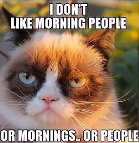 I don't like morning people. Or mornings. Or people Picture Quote #2