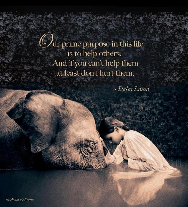 Our prime purpose in this life is to help others. And if you can't help them, at least don't hurt them Picture Quote #1