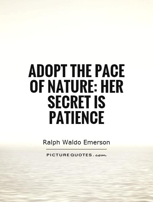 Adopt the pace of nature: her secret is patience Picture Quote #1