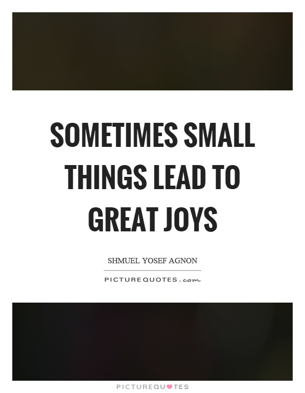 Sometimes small things lead to great joys Picture Quote #1