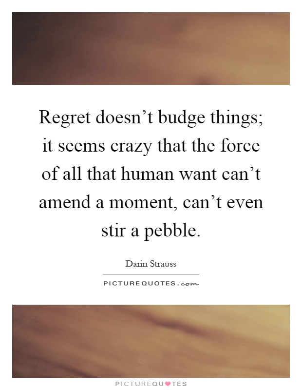 Regret doesn't budge things; it seems crazy that the force of all that human want can't amend a moment, can't even stir a pebble Picture Quote #1