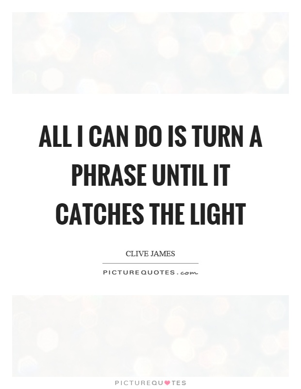 All I can do is turn a phrase until it catches the light Picture Quote #1