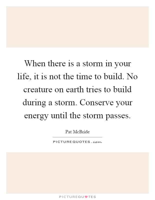 When there is a storm in your life, it is not the time to build. No creature on earth tries to build during a storm. Conserve your energy until the storm passes Picture Quote #1
