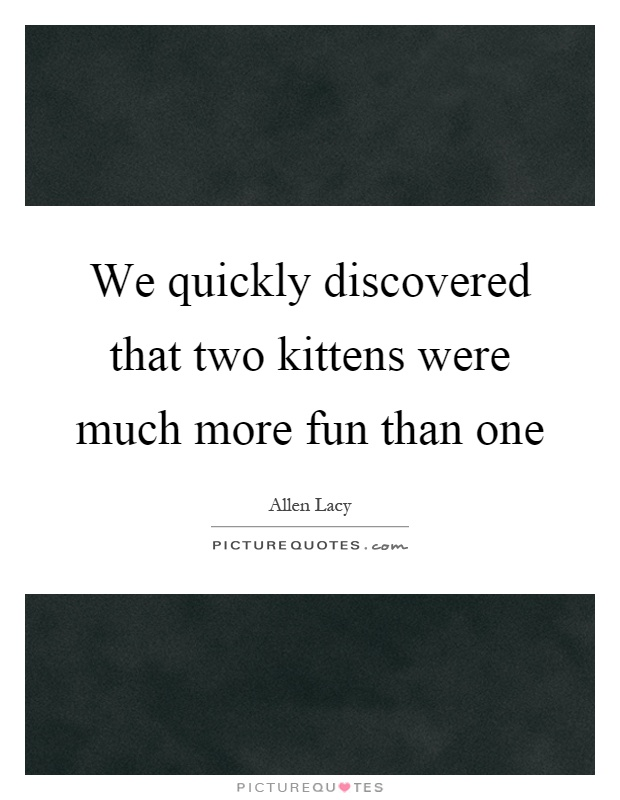 We quickly discovered that two kittens were much more fun than one Picture Quote #1
