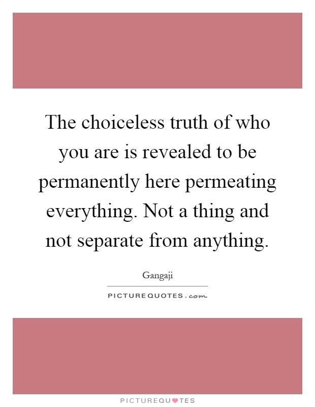 The choiceless truth of who you are is revealed to be permanently here permeating everything. Not a thing and not separate from anything Picture Quote #1