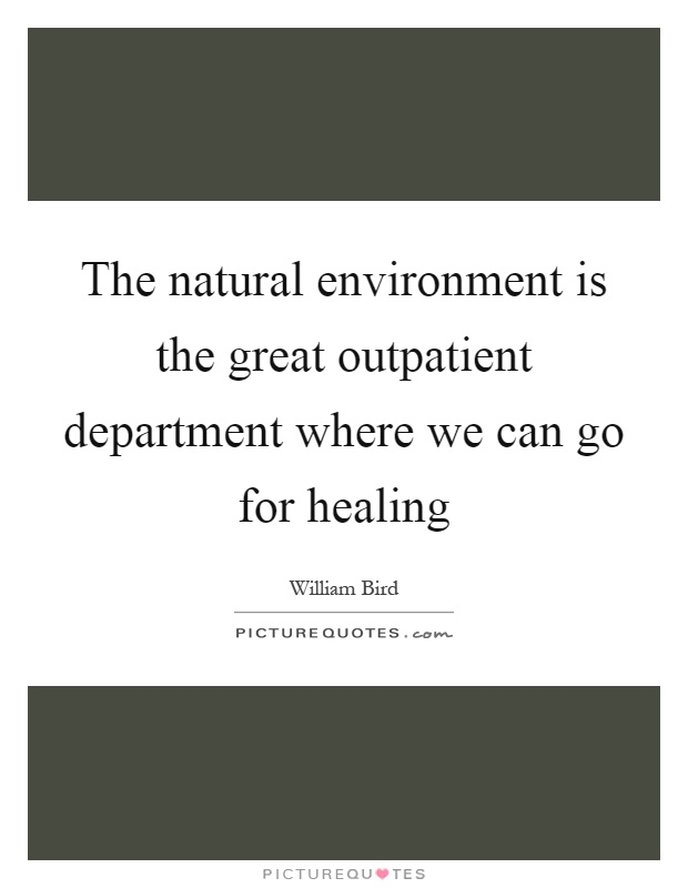 The natural environment is the great outpatient department where we can go for healing Picture Quote #1
