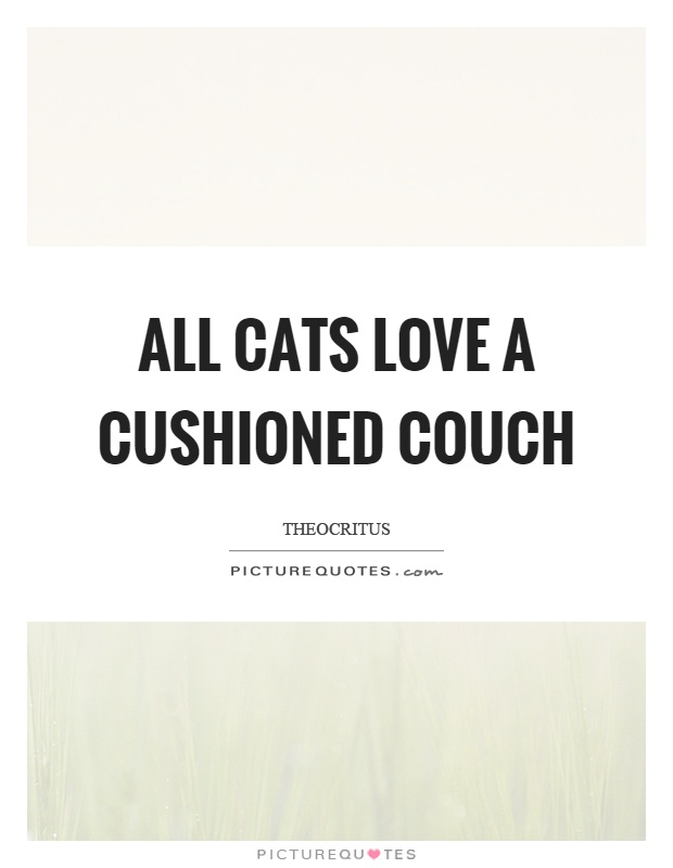All cats love a cushioned couch Picture Quote #1