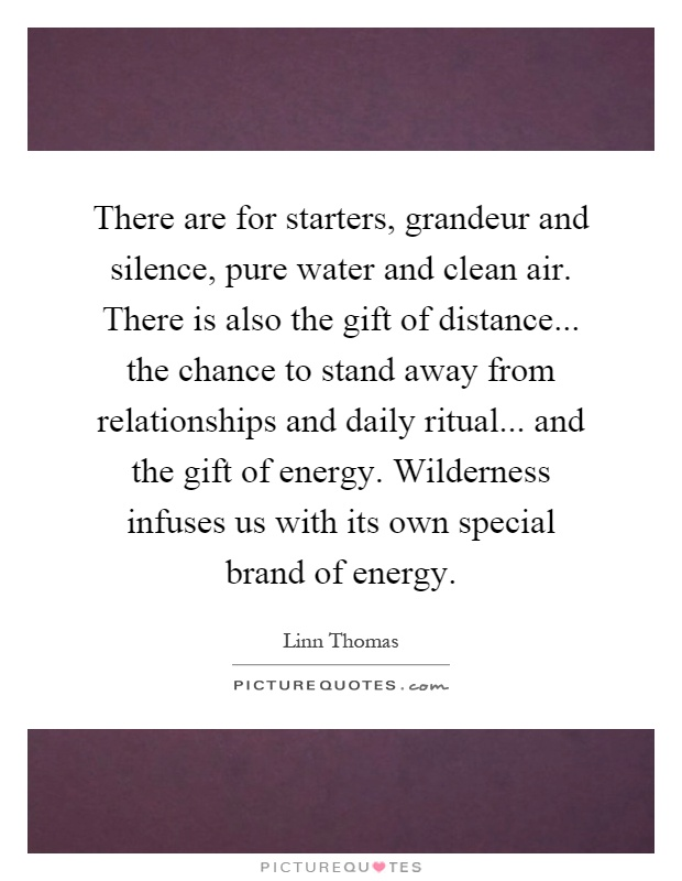 There are for starters, grandeur and silence, pure water and clean air. There is also the gift of distance... the chance to stand away from relationships and daily ritual... and the gift of energy. Wilderness infuses us with its own special brand of energy Picture Quote #1