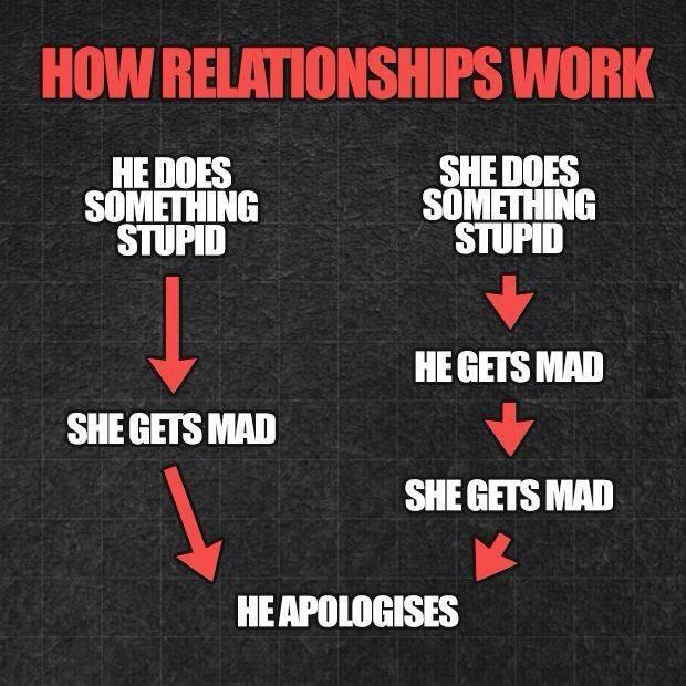 How relationships work. He does something stupid. She gets mad. He apologises. She does something stupid. He gets mad. She gets mad. He apologises Picture Quote #1