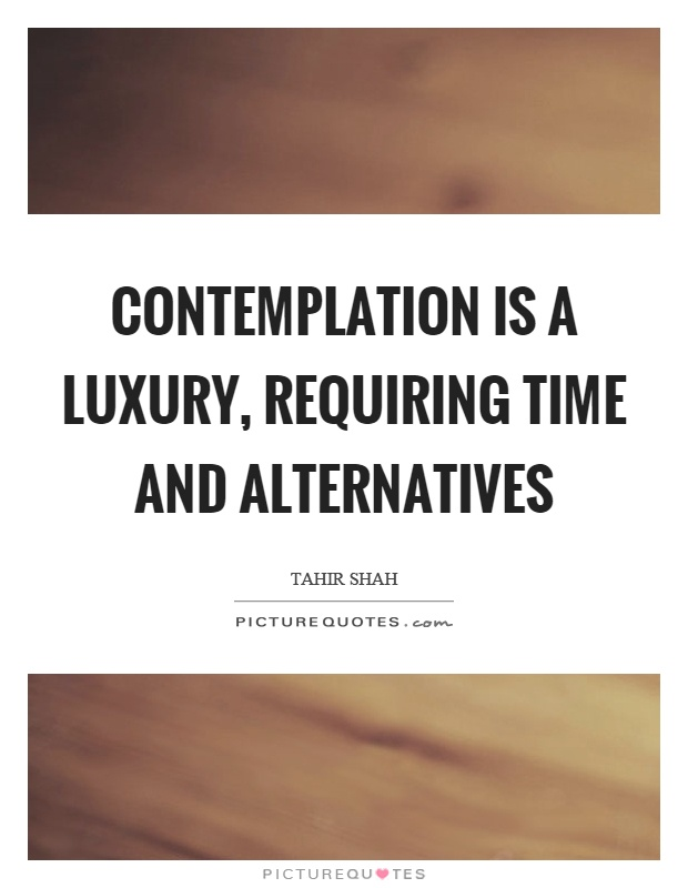 Contemplation is a luxury, requiring time and alternatives Picture Quote #1