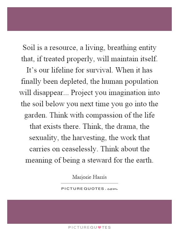 Soil is a resource, a living, breathing entity that, if treated properly, will maintain itself. It's our lifeline for survival. When it has finally been depleted, the human population will disappear... Project you imagination into the soil below you next time you go into the garden. Think with compassion of the life that exists there. Think, the drama, the sexuality, the harvesting, the work that carries on ceaselessly. Think about the meaning of being a steward for the earth Picture Quote #1
