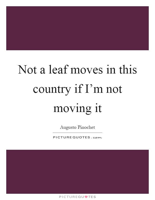 Not a leaf moves in this country if I'm not moving it Picture Quote #1