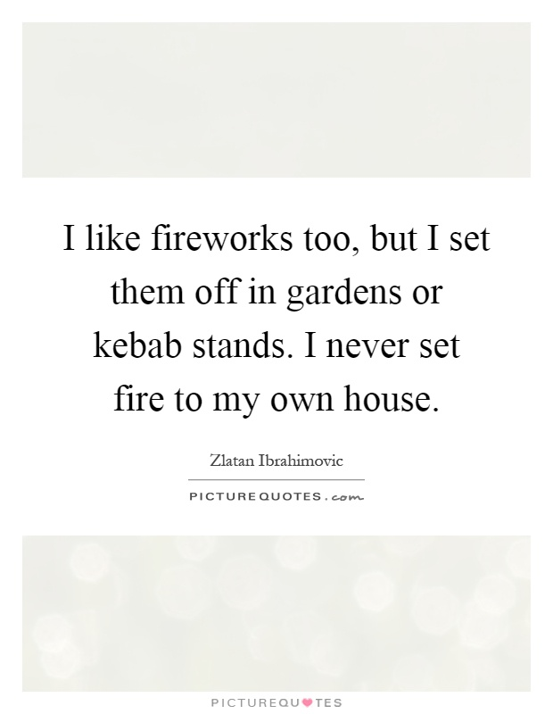 I like fireworks too, but I set them off in gardens or kebab stands. I never set fire to my own house Picture Quote #1