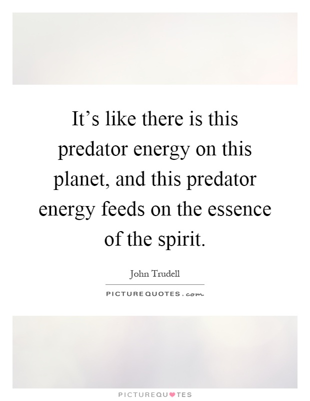 It's like there is this predator energy on this planet, and this predator energy feeds on the essence of the spirit Picture Quote #1