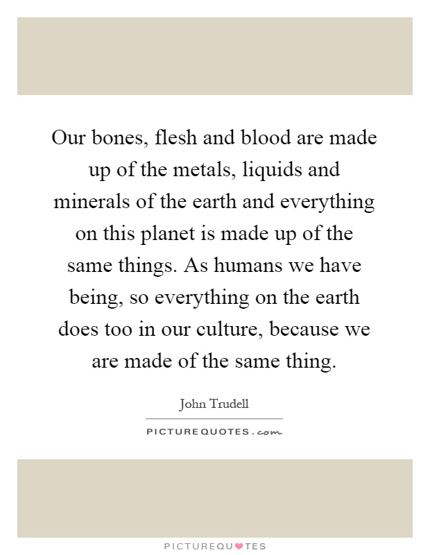 Our bones, flesh and blood are made up of the metals, liquids and minerals of the earth and everything on this planet is made up of the same things. As humans we have being, so everything on the earth does too in our culture, because we are made of the same thing Picture Quote #1