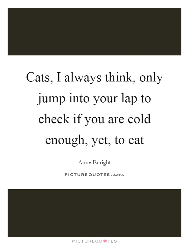 Cats, I always think, only jump into your lap to check if you are cold enough, yet, to eat Picture Quote #1