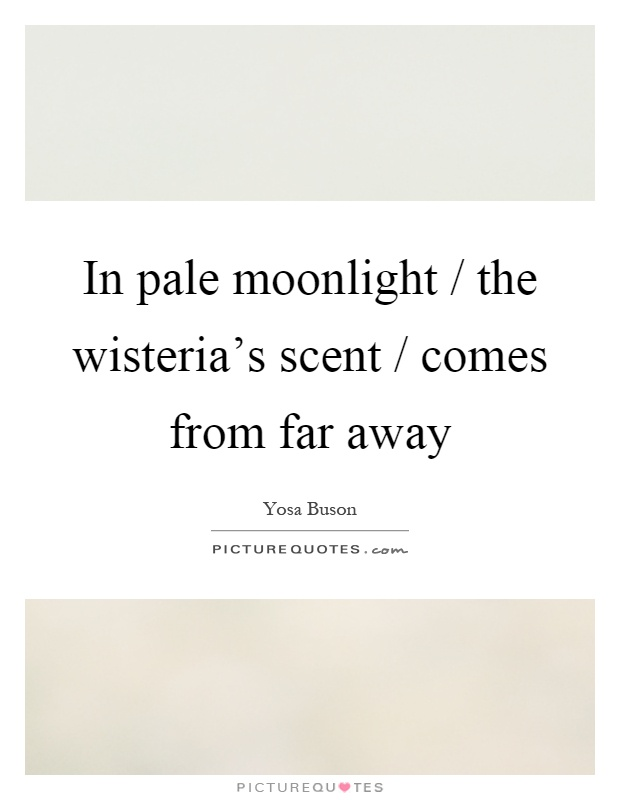 In pale moonlight / the wisteria's scent / comes from far away Picture Quote #1