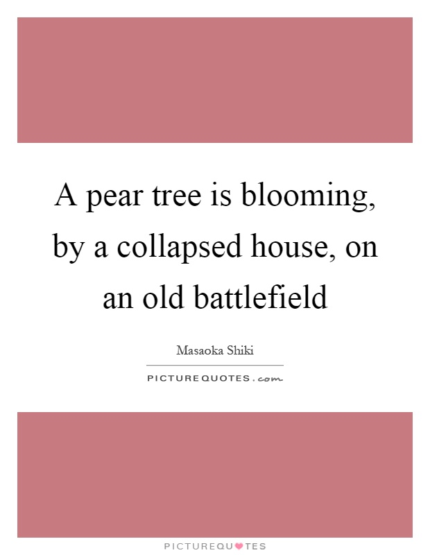 A pear tree is blooming, by a collapsed house, on an old battlefield Picture Quote #1