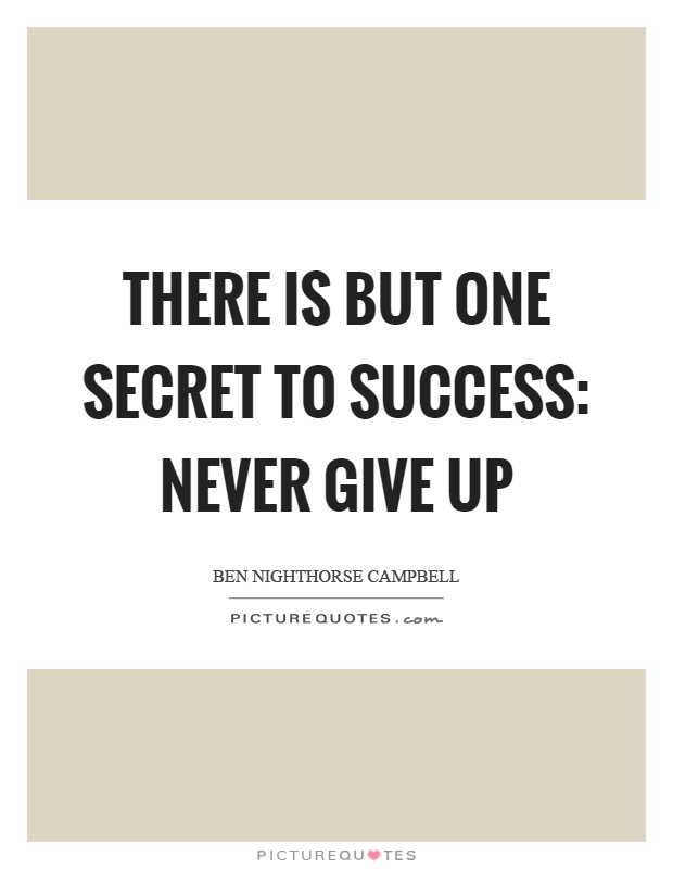 There is but one secret to success: never give up Picture Quote #1