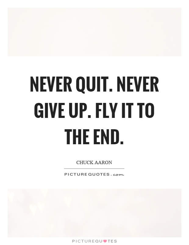 Never quit. Never give up. Fly it to the end Picture Quote #1