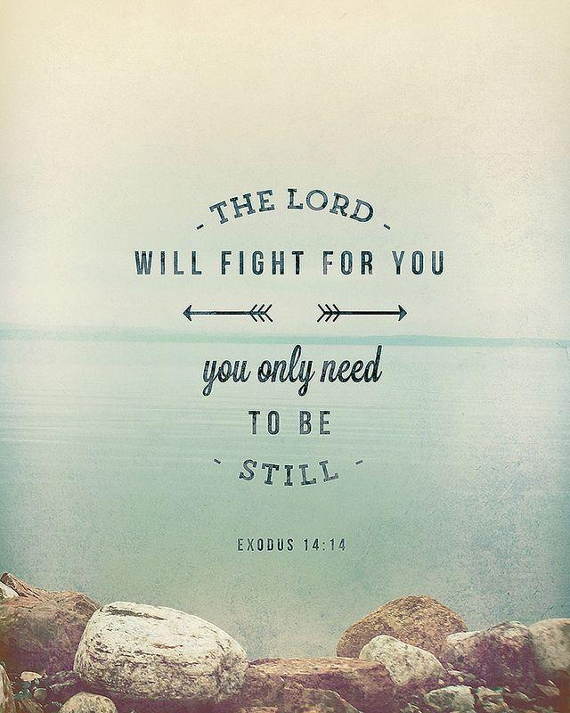 The Lord will fight for you, you only need to be still Picture Quote #1