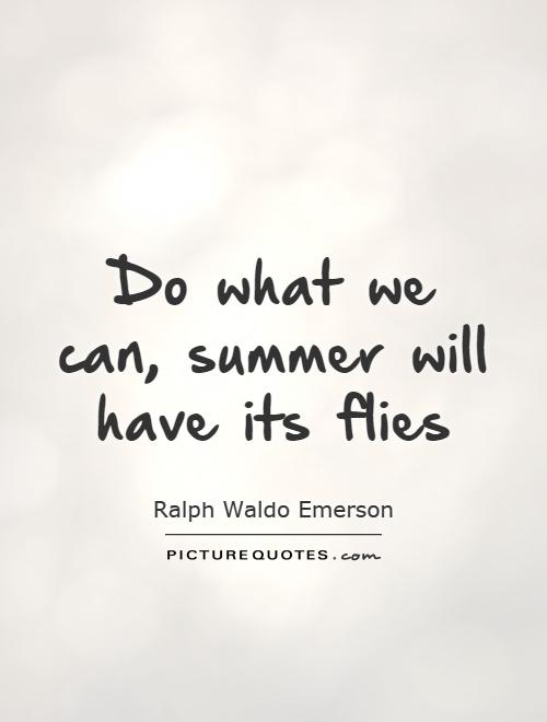 Do what we can, summer will have its flies Picture Quote #1