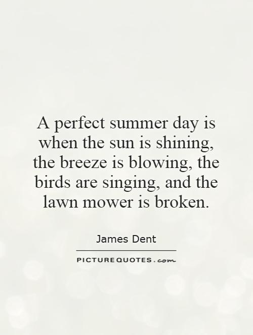 A perfect summer day is when the sun is shining, the breeze is blowing, the birds are singing, and the lawn mower is broken Picture Quote #1