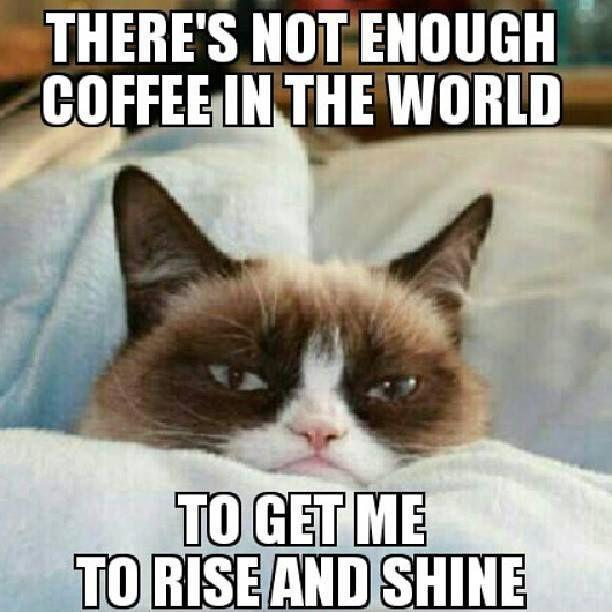 There is not enough coffee in the world to get me to rise and shine Picture Quote #1