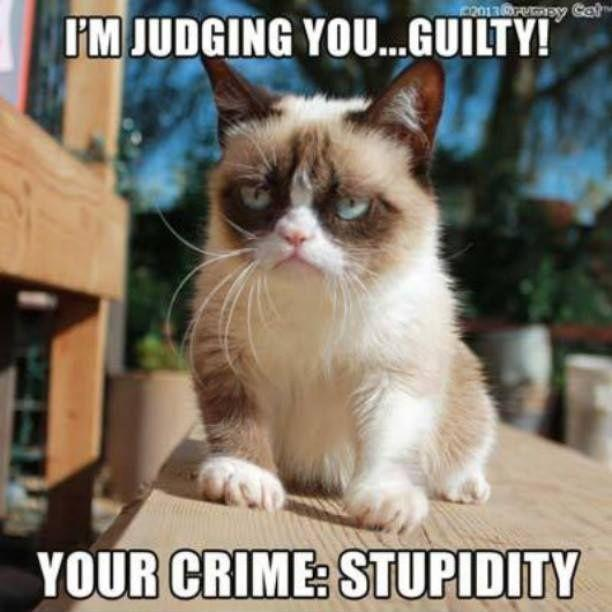 I'm judging you guilty. Your crime: stupidity Picture Quote #1