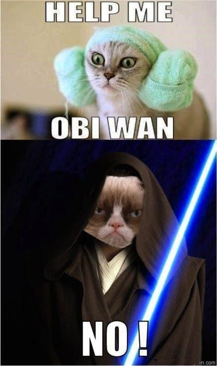 Help me Obi Wan. No! Picture Quote #1