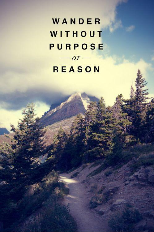 Wander without purpose or reason Picture Quote #1