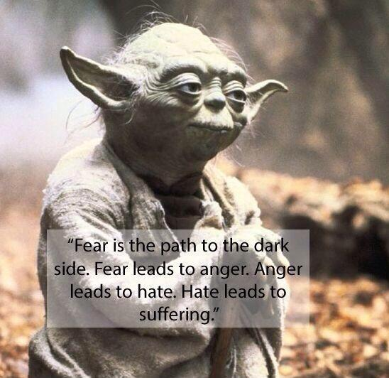 Fear is the path to the dark side. Fear leads to anger. Anger leads to hate. Hate leads  to suffering Picture Quote #2
