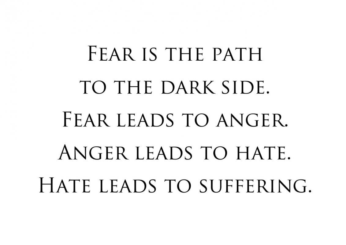 Fear is the path to the dark side. Fear leads to anger. Anger leads to hate. Hate leads  to suffering Picture Quote #3