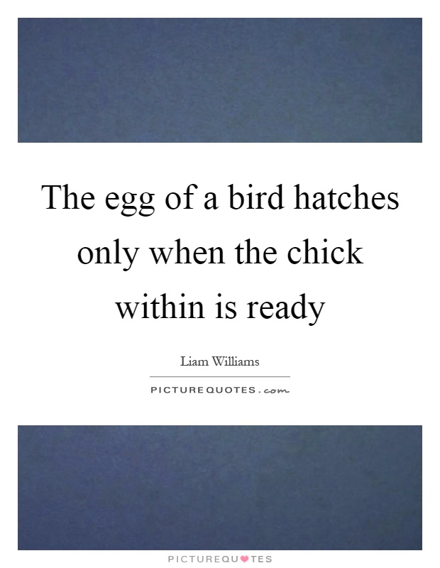 The egg of a bird hatches only when the chick within is ready Picture Quote #1